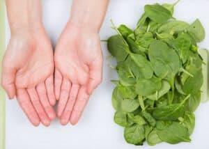 hand bladgroenten