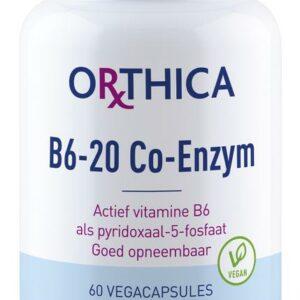 orthica b6 20 co enzym